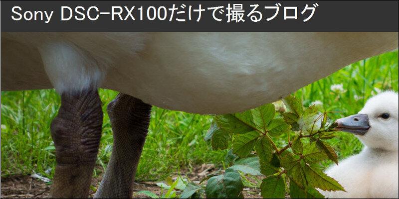 伴貞良 blog