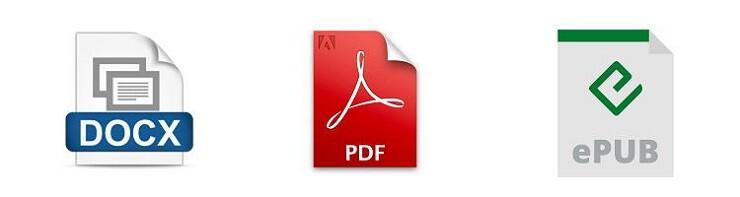 docx pdf epub